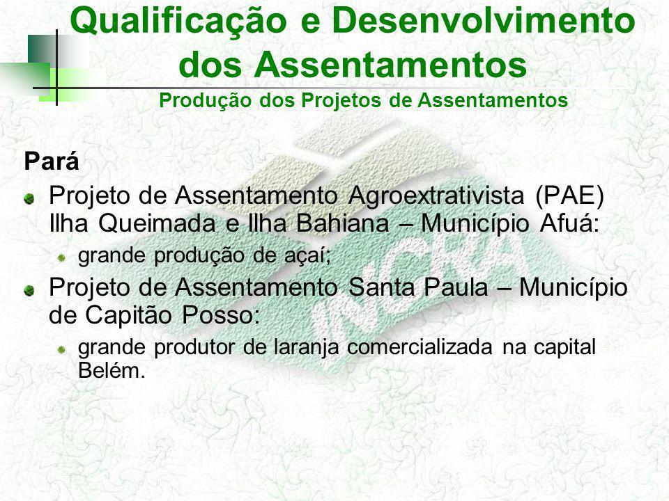 Qualificação e Desenvolvimento dos Assentamentos Pará Projeto de Assentamento Agroextrativista (PAE) Ilha Queimada e Ilha Bahiana – Município Afuá: gr