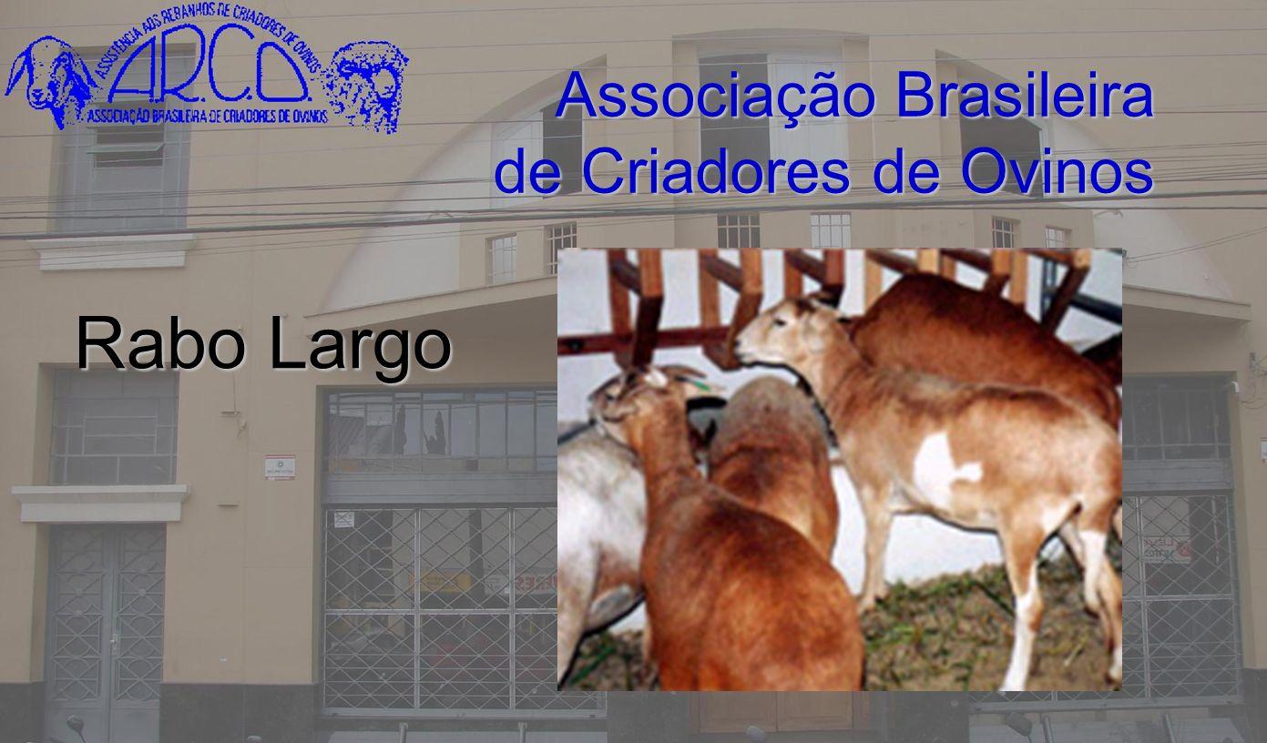 Associação Brasileira de Criadores de Ovinos Rabo Largo