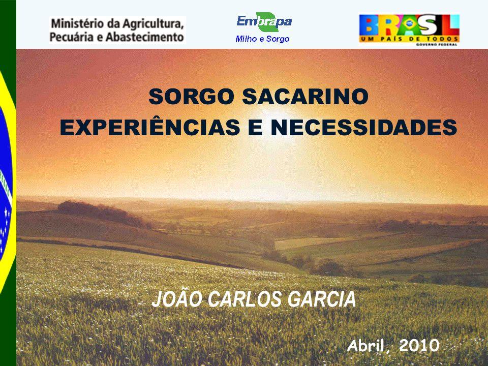 SORGO SACARINO EXPERIÊNCIAS E NECESSIDADES Abril, 2010 JOÃO CARLOS GARCIA