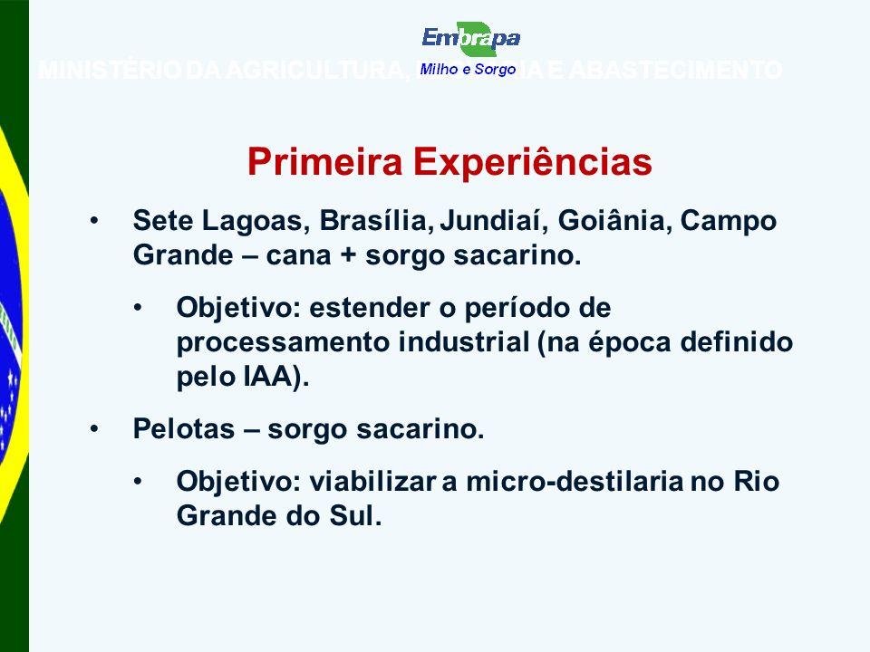 MINISTÉRIO DA AGRICULTURA, PECUÁRIA E ABASTECIMENTO Primeira Experiências Sete Lagoas, Brasília, Jundiaí, Goiânia, Campo Grande – cana + sorgo sacarino.
