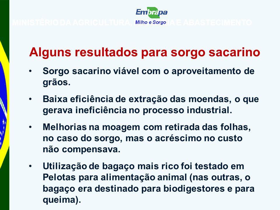 MINISTÉRIO DA AGRICULTURA, PECUÁRIA E ABASTECIMENTO Alguns resultados para sorgo sacarino Sorgo sacarino viável com o aproveitamento de grãos.