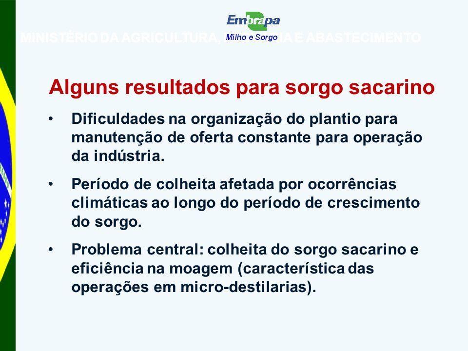 MINISTÉRIO DA AGRICULTURA, PECUÁRIA E ABASTECIMENTO Alguns resultados para sorgo sacarino Dificuldades na organização do plantio para manutenção de oferta constante para operação da indústria.