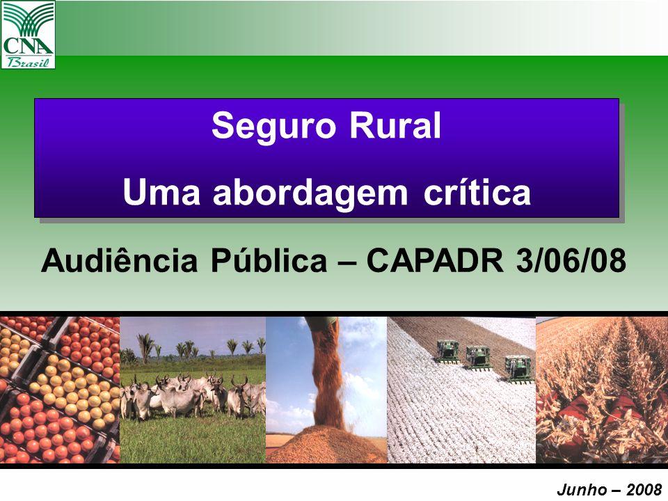 Seguro Rural Uma abordagem crítica Seguro Rural Uma abordagem crítica Audiência Pública – CAPADR 3/06/08 Junho – 2008