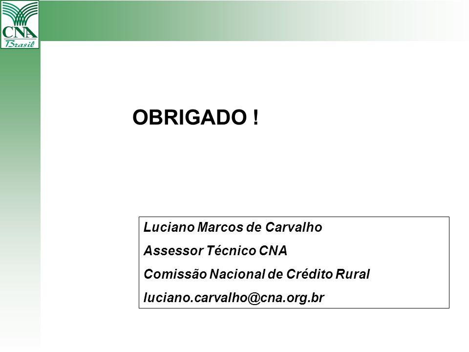 Luciano Marcos de Carvalho Assessor Técnico CNA Comissão Nacional de Crédito Rural luciano.carvalho@cna.org.br OBRIGADO !