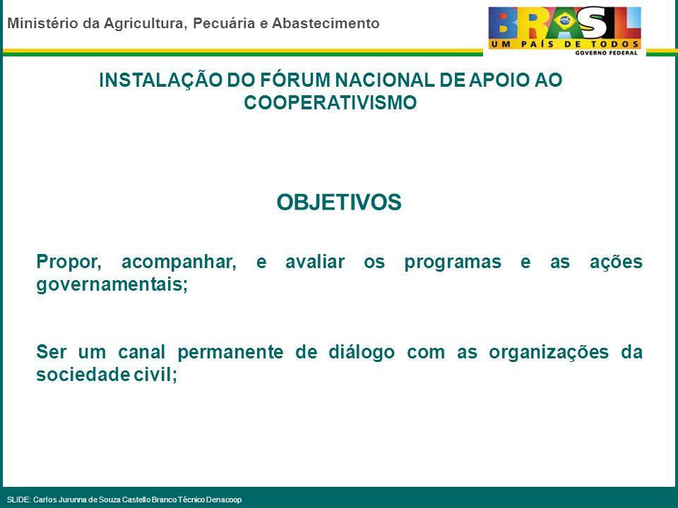 Ministério da Agricultura, Pecuária e Abastecimento SLIDE: Carlos Jurunna de Souza Castello Branco Técnico Denacoop 6.Criação de um programa específic