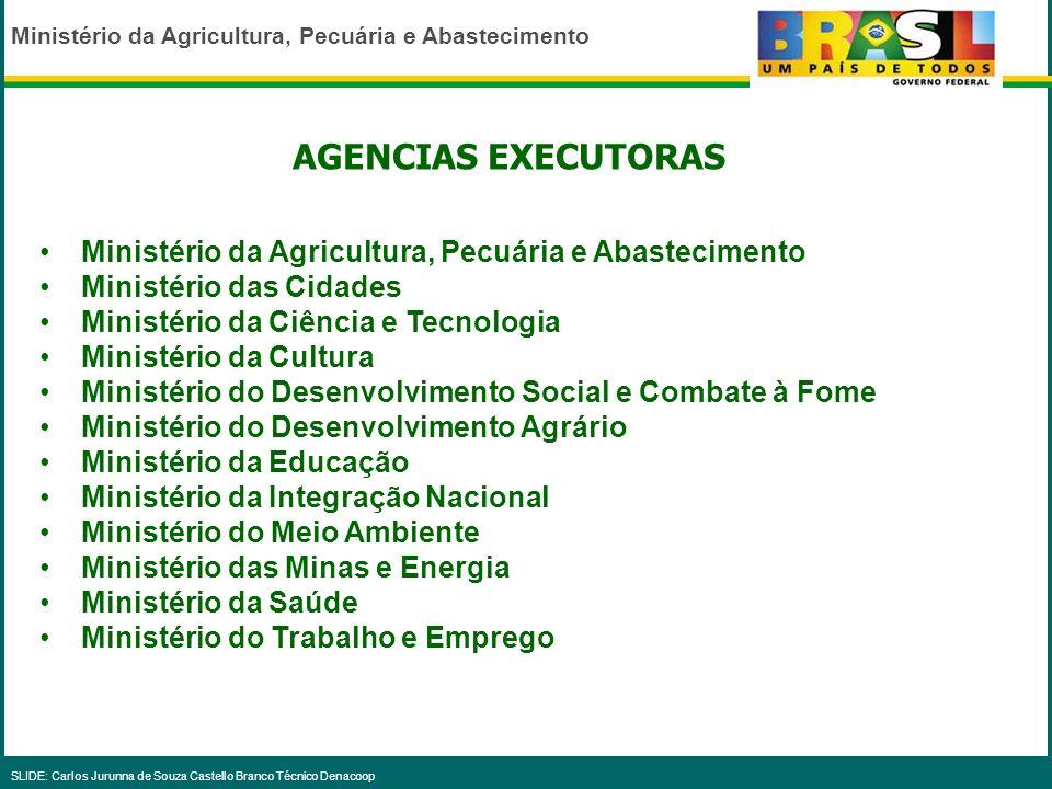 Ministério da Agricultura, Pecuária e Abastecimento SLIDE: Carlos Jurunna de Souza Castello Branco Técnico Denacoop PROGRAMAS DE PPA 2004 -2007 QUE TÊ