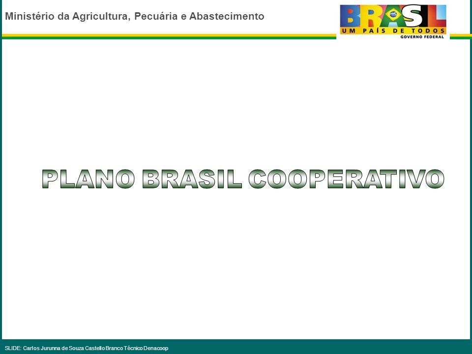 Ministério da Agricultura, Pecuária e Abastecimento SLIDE: Carlos Jurunna de Souza Castello Branco Técnico Denacoop...O Estado sozinho não tem recurso