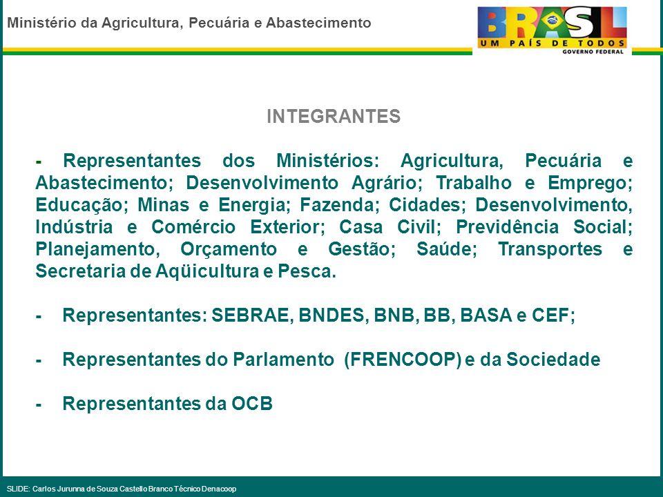 Ministério da Agricultura, Pecuária e Abastecimento SLIDE: Carlos Jurunna de Souza Castello Branco Técnico Denacoop DIRETRIZES A) NO MEGAOBJETIVO DA INCLUSÃO SOCIAL E DA REDUÇÃO DAS DESIGUALDADES SOCIAIS.