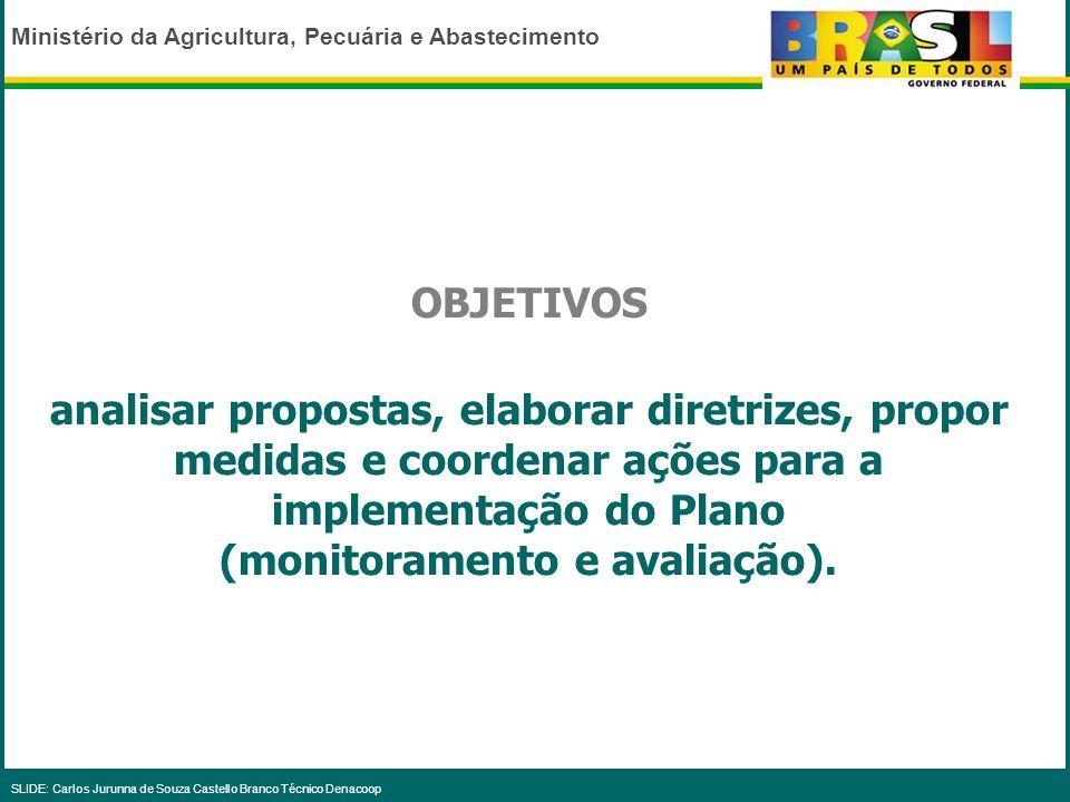 Ministério da Agricultura, Pecuária e Abastecimento SLIDE: Carlos Jurunna de Souza Castello Branco Técnico Denacoop INTEGRANTES - Representantes dos M