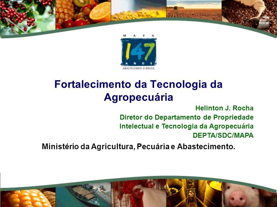 Fortalecimento da Tecnologia da Agropecuária Ministério da Agricultura, Pecuária e Abastecimento. Helinton J. Rocha Diretor do Departamento de Proprie