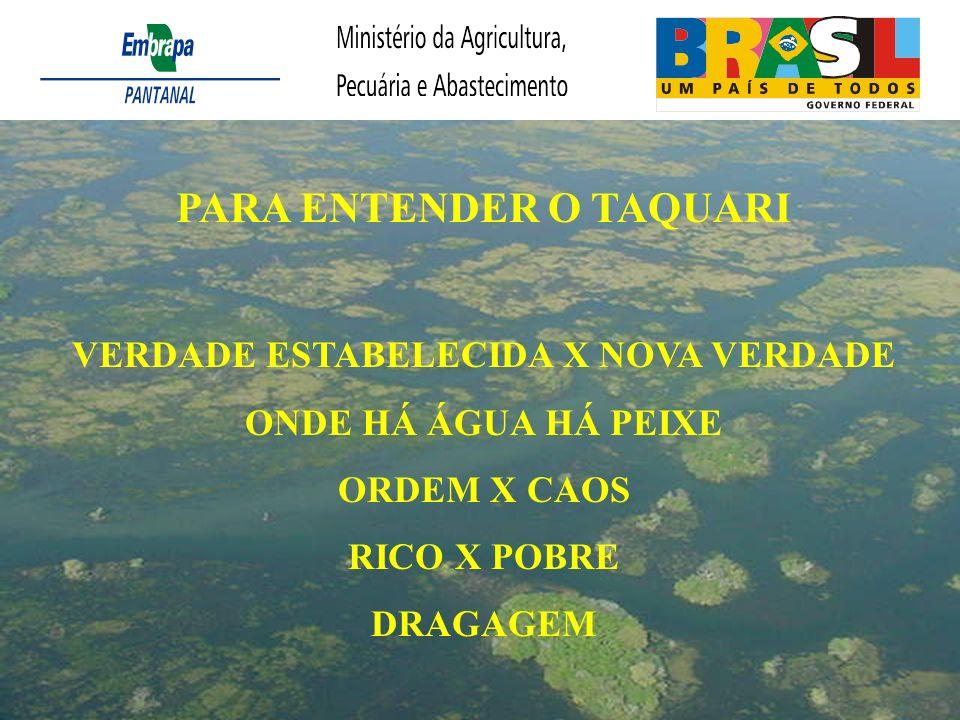 PARA ENTENDER O TAQUARI VERDADE ESTABELECIDA X NOVA VERDADE ONDE HÁ ÁGUA HÁ PEIXE ORDEM X CAOS RICO X POBRE DRAGAGEM