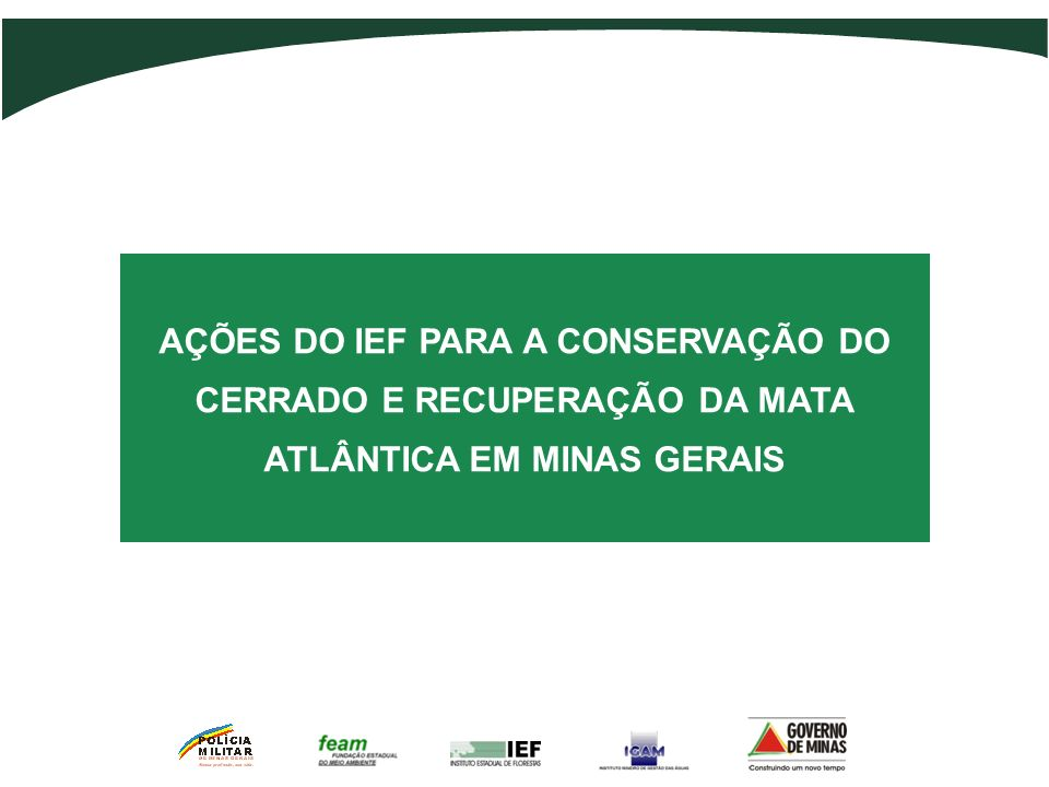 Sistema Estadual de Meio Ambiente SISEMA Palestrante: Humberto Candeias Cavalcanti
