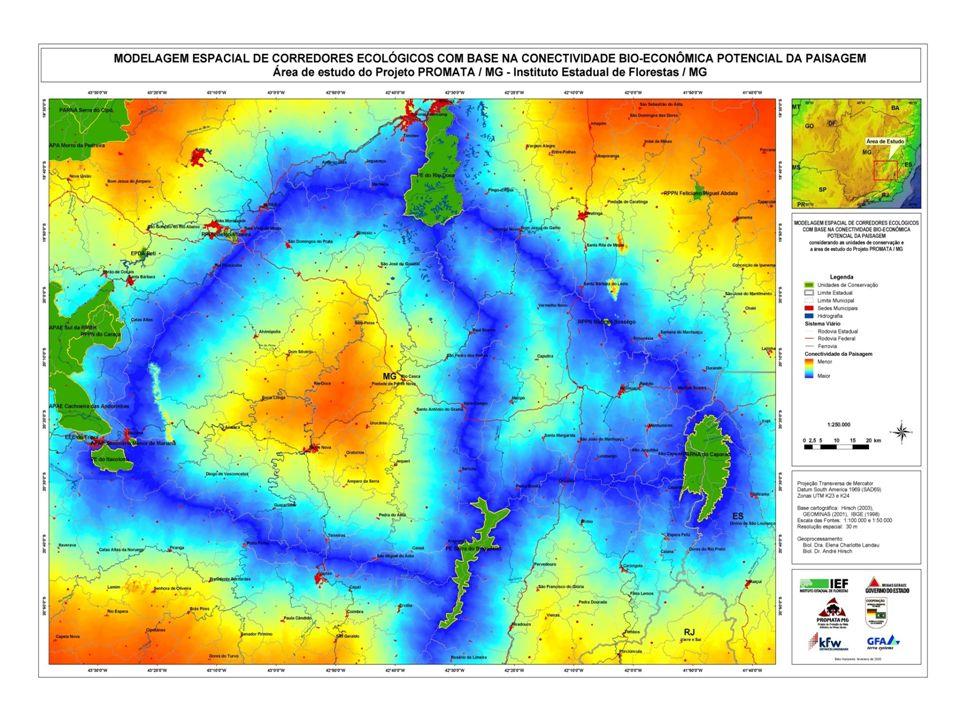 OBJETIVO FINALÍSTICO Expandir a área de cobertura vegetal natural do estado em 0,2% - 120.000 ha (original) Estabelecer uma Taxa de Equilíbrio entre a