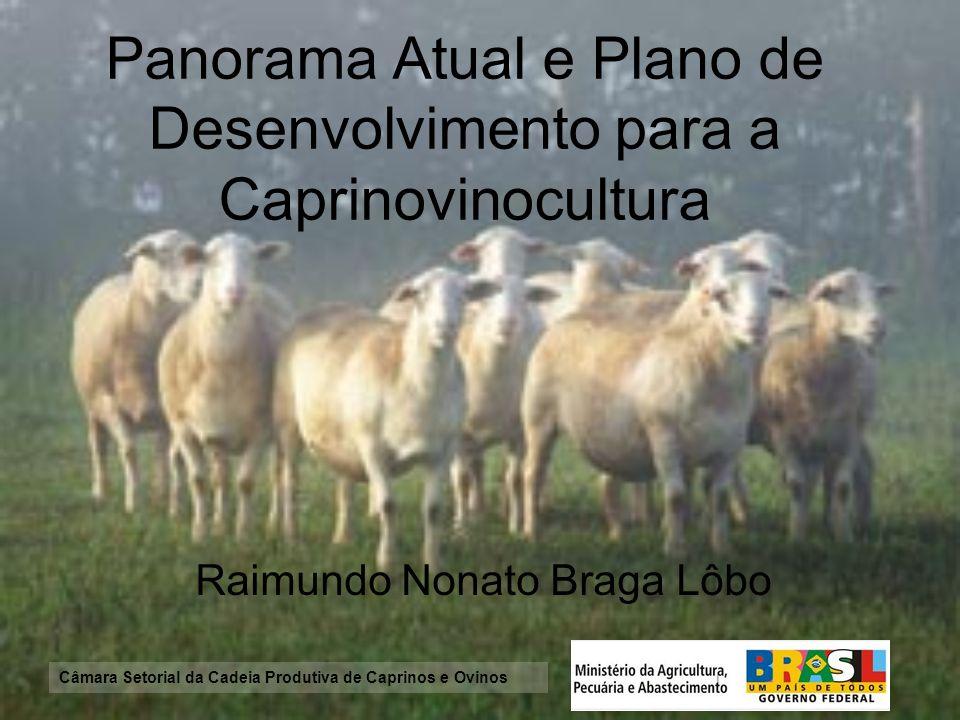 Câmara Setorial da Cadeia Produtiva de Caprinos e Ovinos Panorama Atual e Plano de Desenvolvimento para a Caprinovinocultura Raimundo Nonato Braga Lôb