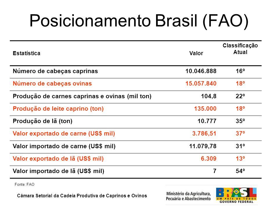 Câmara Setorial da Cadeia Produtiva de Caprinos e Ovinos Posicionamento Brasil (FAO) Estatística Valor Classificação Atual Número de cabeças caprinas1