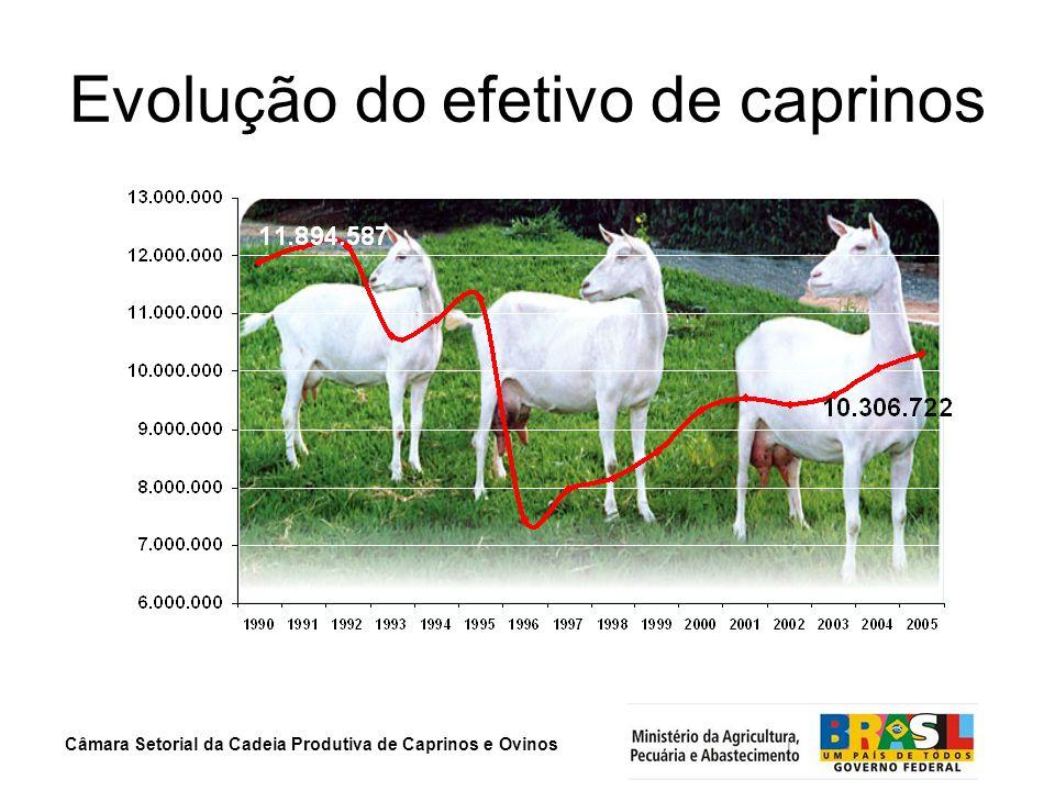 Câmara Setorial da Cadeia Produtiva de Caprinos e Ovinos Evolução do efetivo de caprinos