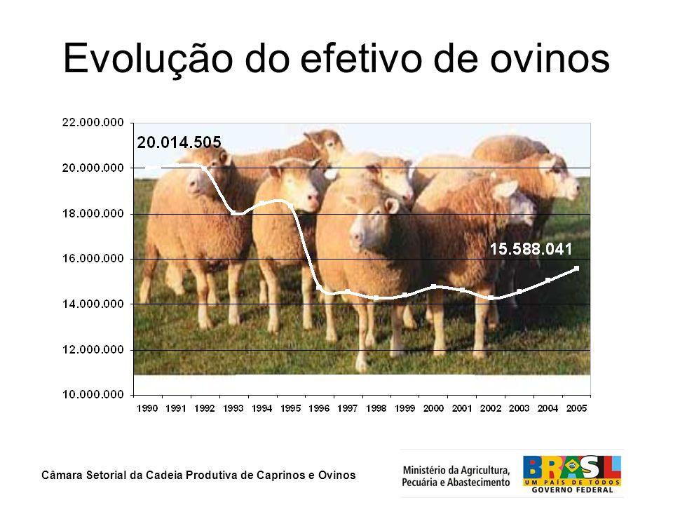 Câmara Setorial da Cadeia Produtiva de Caprinos e Ovinos Evolução do efetivo de ovinos lotessssssssssssssssssssssssssssssssssssssss