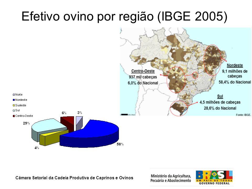 Câmara Setorial da Cadeia Produtiva de Caprinos e Ovinos Efetivo ovino por região (IBGE 2005)