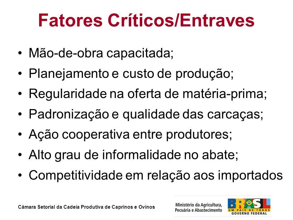 Fatores Críticos/Entraves Mão-de-obra capacitada; Planejamento e custo de produção; Regularidade na oferta de matéria-prima; Padronização e qualidade