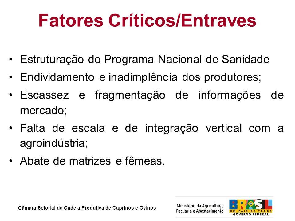 Câmara Setorial da Cadeia Produtiva de Caprinos e Ovinos Fatores Críticos/Entraves Estruturação do Programa Nacional de Sanidade Endividamento e inadi