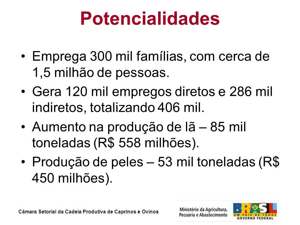 Câmara Setorial da Cadeia Produtiva de Caprinos e Ovinos Potencialidades Emprega 300 mil famílias, com cerca de 1,5 milhão de pessoas. Gera 120 mil em