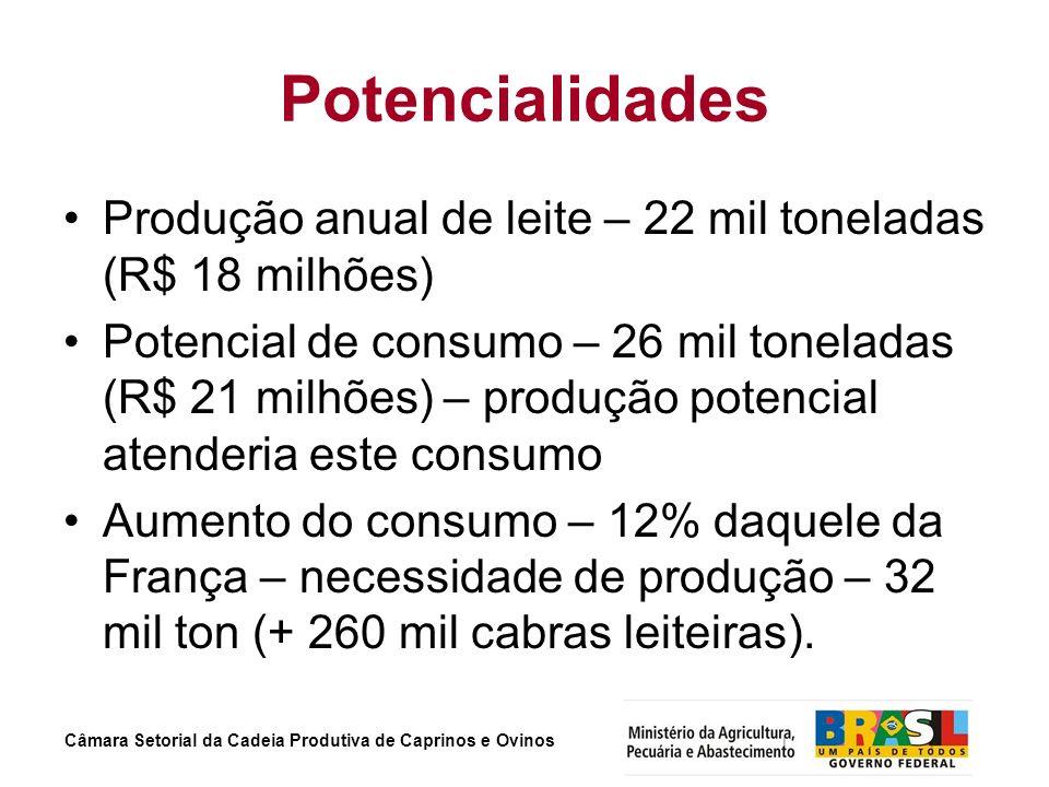 Câmara Setorial da Cadeia Produtiva de Caprinos e Ovinos Potencialidades Produção anual de leite – 22 mil toneladas (R$ 18 milhões) Potencial de consu
