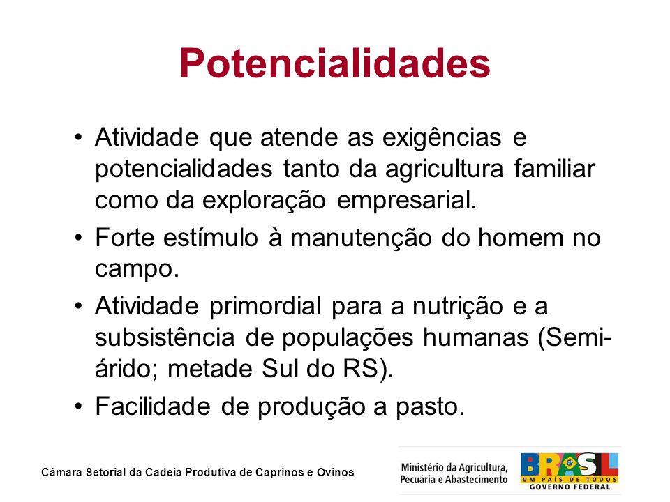 Câmara Setorial da Cadeia Produtiva de Caprinos e Ovinos Potencialidades Atividade que atende as exigências e potencialidades tanto da agricultura fam