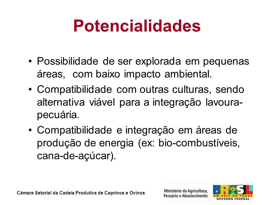 Câmara Setorial da Cadeia Produtiva de Caprinos e Ovinos Potencialidades Possibilidade de ser explorada em pequenas áreas, com baixo impacto ambiental