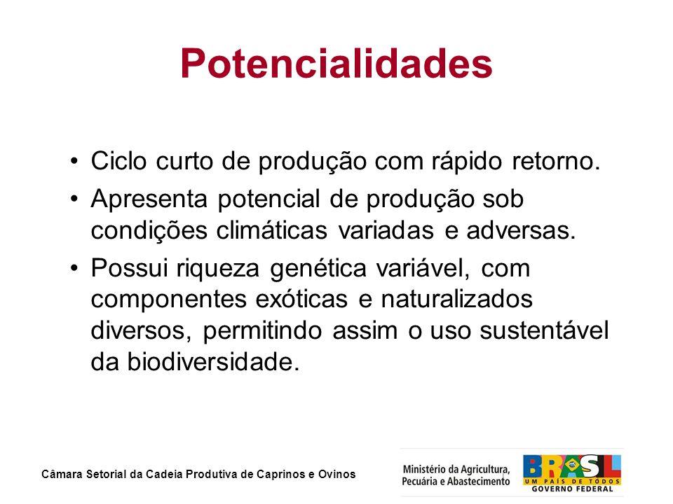 Câmara Setorial da Cadeia Produtiva de Caprinos e Ovinos Potencialidades Ciclo curto de produção com rápido retorno. Apresenta potencial de produção s