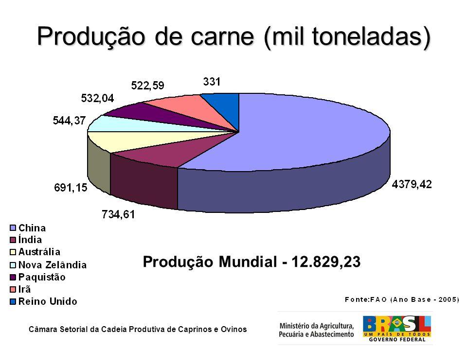 Câmara Setorial da Cadeia Produtiva de Caprinos e Ovinos Produção de carne (mil toneladas) Produção Mundial - 12.829,23