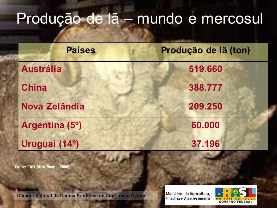 Câmara Setorial da Cadeia Produtiva de Caprinos e Ovinos Exportação de peles Fonte: FAO(Ano Base - 2005) CaprinosOvinos PaísUS$ milPaísUS$ mil Uganda 2.826,00 Nova Zelândia 82.168,00 Tanzânia 1.408,04 Austrália 6.312,00 Quênia 1.174,29 Irã 3.500,00 Somália 1.105,36 Israel 1.154,00 Nova Zelândia 375,00 Etiópia 721,43 Burundi 358,00 Afeganistão 366,07 Iêmen 243,75 Sudão 290,18 Ruanda 241,07 Arábia Saudita 207,00 China 177,00 Iêmen 151,79 Sudão 146,43 Namíbia 134,00