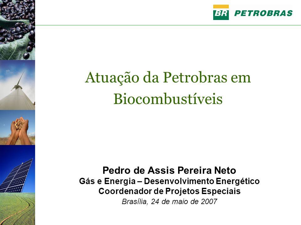 Pedro de Assis Pereira Neto Gás e Energia – Desenvolvimento Energético Coordenador de Projetos Especiais Brasília, 24 de maio de 2007 Atuação da Petrobras em Biocombustíveis