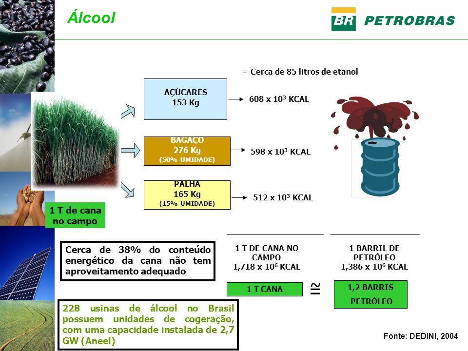 1 T DE CANA NO CAMPO 1,718 x 10 6 KCAL 1 BARRIL DE PETRÓLEO 1,386 x 10 6 KCAL AÇÚCARES 153 Kg BAGAÇO 276 Kg (50% UMIDADE) PALHA 165 Kg (15% UMIDADE) 608 x 10 3 KCAL 598 x 10 3 KCAL 512 x 10 3 KCAL 1 T CANA 1,2 BARRIS PETRÓLEO ~ = Cerca de 38% do conteúdo energético da cana não tem aproveitamento adequado 1 T de cana no campo Fonte: DEDINI, 2004 Álcool = Cerca de 85 litros de etanol 228 usinas de álcool no Brasil possuem unidades de cogeração, com uma capacidade instalada de 2,7 GW (Aneel)