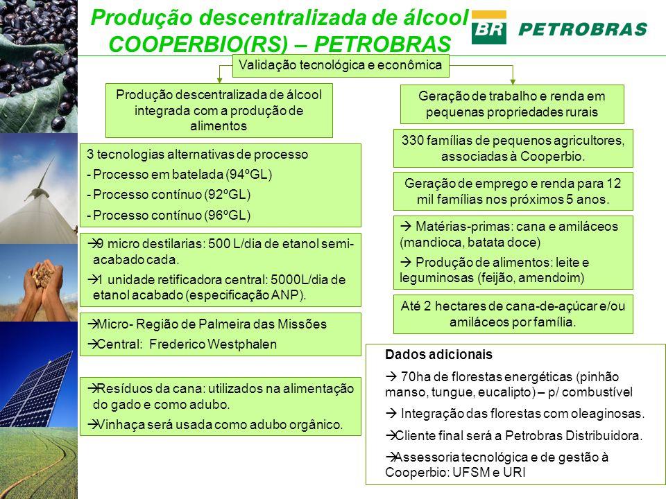 Produção descentralizada de álcool COOPERBIO(RS) – PETROBRAS Dados adicionais 70ha de florestas energéticas (pinhão manso, tungue, eucalipto) – p/ combustível Integração das florestas com oleaginosas.