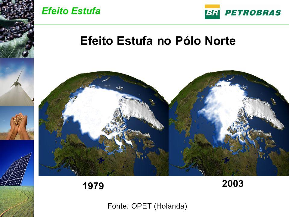 1979 2003 Efeito Estufa no Pólo Norte Fonte: OPET (Holanda) Efeito Estufa