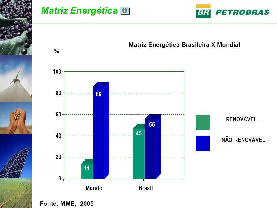 Fonte: MME, 2005 RENOVÁVEL NÃO RENOVÁVEL Brasil 0 20 40 60 80 100 Mundo 14 86 45 55 % Matriz Energética Brasileira X Mundial Matriz Energética