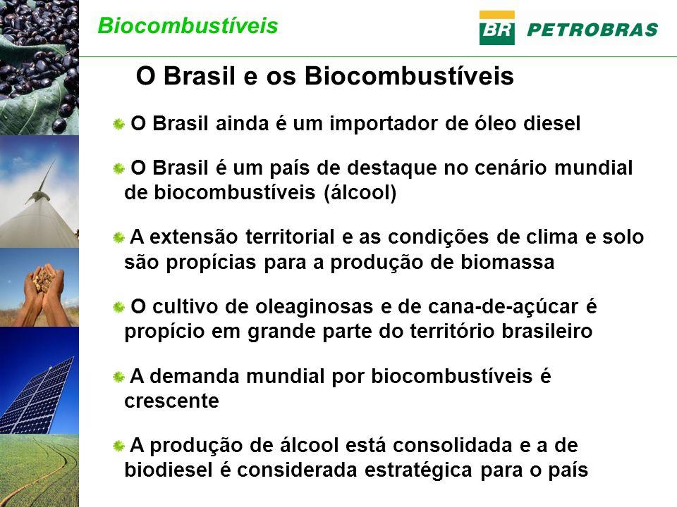O Brasil ainda é um importador de óleo diesel O Brasil é um país de destaque no cenário mundial de biocombustíveis (álcool) A extensão territorial e as condições de clima e solo são propícias para a produção de biomassa O cultivo de oleaginosas e de cana-de-açúcar é propício em grande parte do território brasileiro A demanda mundial por biocombustíveis é crescente A produção de álcool está consolidada e a de biodiesel é considerada estratégica para o país O Brasil e os Biocombustíveis Biocombustíveis