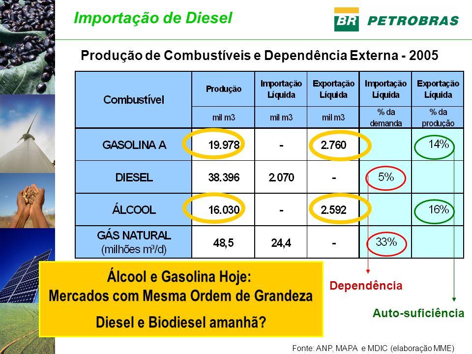 Produção de Combustíveis e Dependência Externa - 2005 Fonte: ANP, MAPA e MDIC (elaboração MME) Dependência Auto-suficiência Álcool e Gasolina Hoje: Mercados com Mesma Ordem de Grandeza Diesel e Biodiesel amanhã.