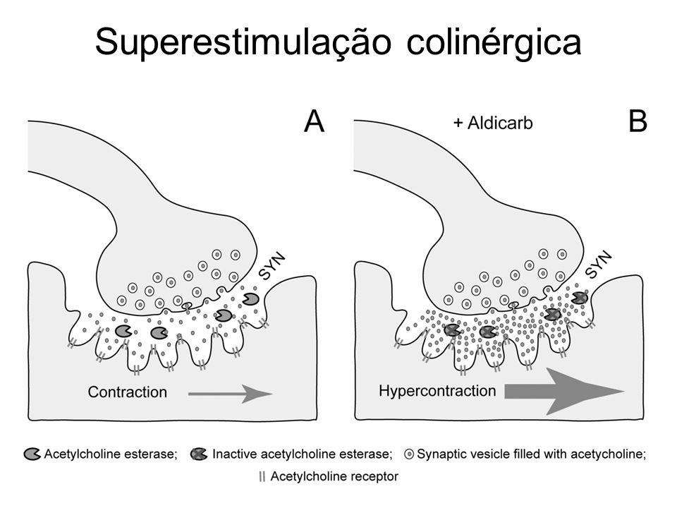Superestimulação colinérgica