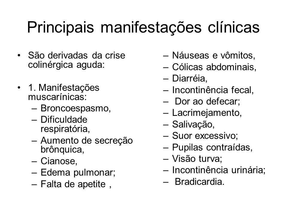 Principais manifestações clínicas São derivadas da crise colinérgica aguda: 1. Manifestações muscarínicas: –Broncoespasmo, –Dificuldade respiratória,