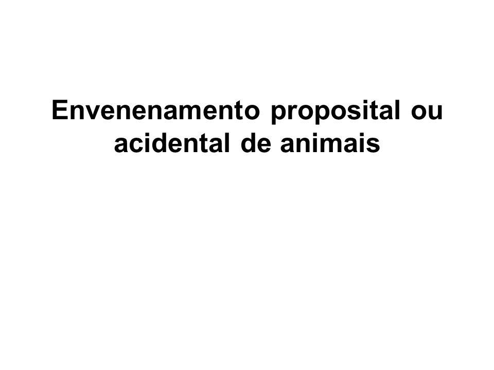 Envenenamento proposital ou acidental de animais