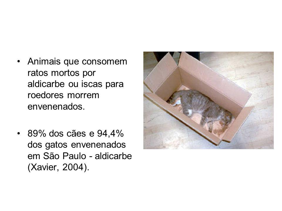 Animais que consomem ratos mortos por aldicarbe ou iscas para roedores morrem envenenados. 89% dos cães e 94,4% dos gatos envenenados em São Paulo - a