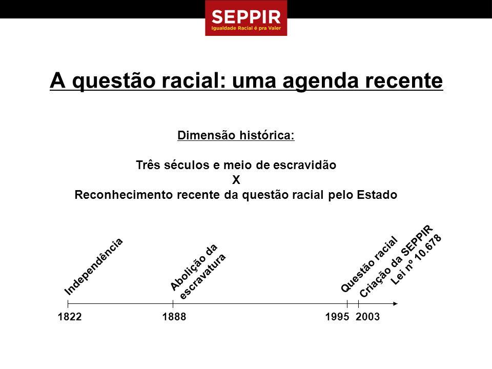 A Política Nacional de Promoção da Igualdade Racial e a SEPPIR Atribuição da SEPPIR:...formulação, coordenação e articulação de políticas e diretrizes para a promoção da igualdade racial...