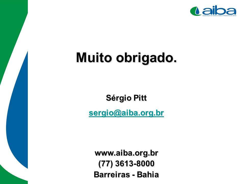 Sérgio Pitt sergio@aiba.org.br www.aiba.org.br (77) 3613-8000 Barreiras - Bahia Muito obrigado.