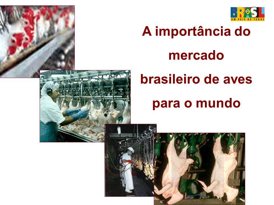 A importância do mercado brasileiro de aves para o mundo