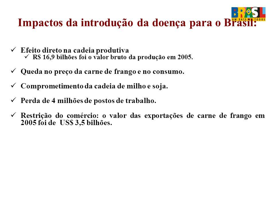 Impactos da introdução da doença para o Brasil: Efeito direto na cadeia produtiva R$ 16,9 bilhões foi o valor bruto da produção em 2005.