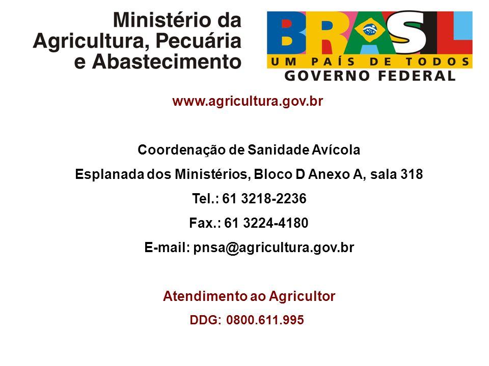 www.agricultura.gov.br Coordenação de Sanidade Avícola Esplanada dos Ministérios, Bloco D Anexo A, sala 318 Tel.: 61 3218-2236 Fax.: 61 3224-4180 E-mail: pnsa@agricultura.gov.br Atendimento ao Agricultor DDG: 0800.611.995