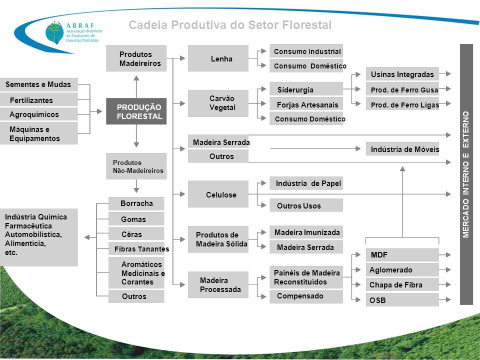 Sementes e Mudas Fertilizantes Agroquímicos Máquinas e Equipamentos Indústria Química Farmacêutica Automobilística, Alimentícia, etc. Produtos Madeire