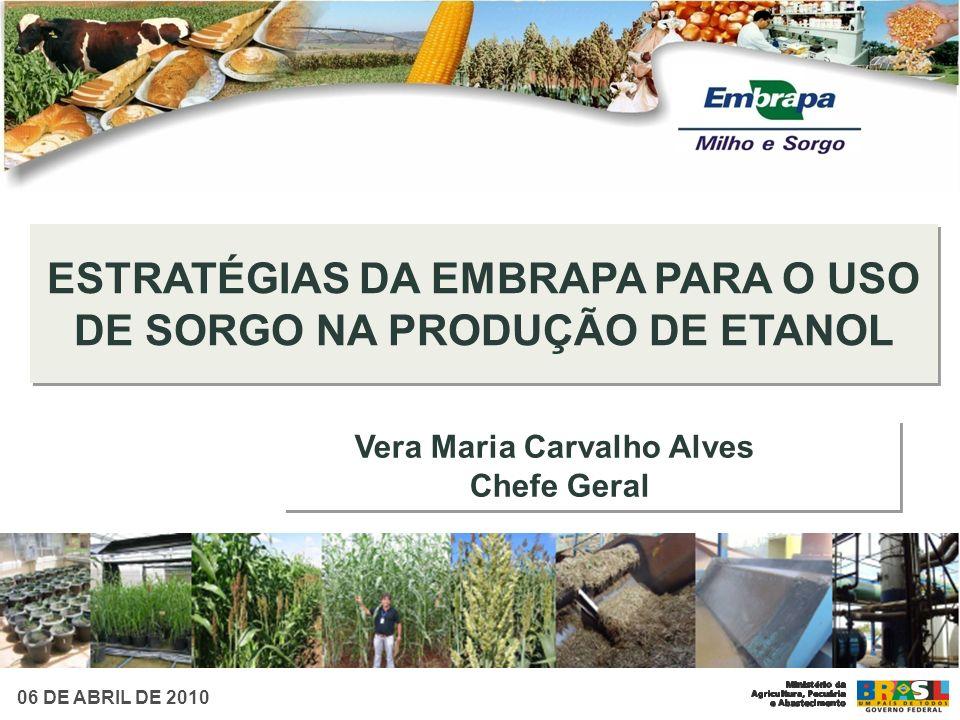 Vera Maria Carvalho Alves Chefe Geral Vera Maria Carvalho Alves Chefe Geral ESTRATÉGIAS DA EMBRAPA PARA O USO DE SORGO NA PRODUÇÃO DE ETANOL 06 DE ABR