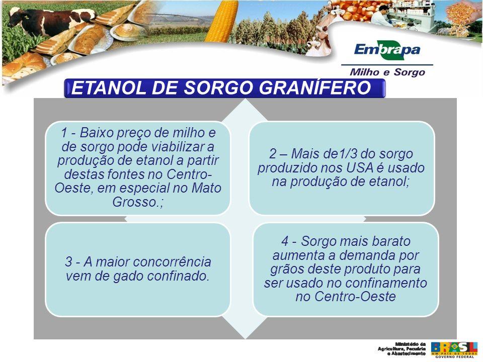 ETANOL DE SORGO GRANÍFERO 1 - Baixo preço de milho e de sorgo pode viabilizar a produção de etanol a partir destas fontes no Centro- Oeste, em especia